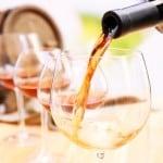 Sarah's Vineyard